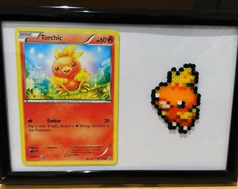 Pokemon Torchic Frame with Torchic Card