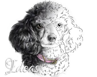 Poodle Art Digital Stamp Download   Dog DigiStamp   Scrapbooking Clipart   Paper Crafts   Dog Portrait   Dog Art Digi Stamp