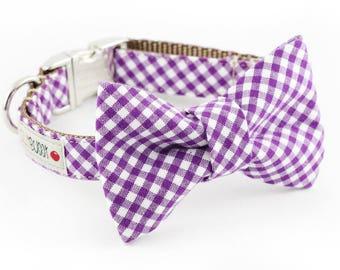 Purple Gingham Dog Bowtie Collar