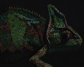 Chameleon pastel - mounted print