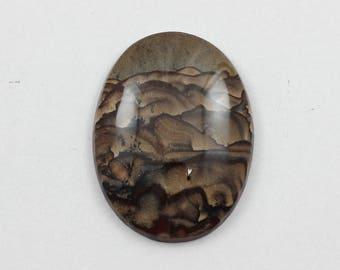 Picture Jasper Cabochon 30x40 Oval Deschutes Oregon Biggs Jasper L15 Vintage Hand Cut Agate