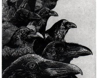 Raven artwork , Raven, crow,  etching 5 x 7 inch 2011