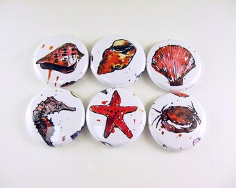6 Ocean Fridge Magnets, wine charms, sea shell, shells, star fish, crab, seahorse, nautical, red, white, bottle cap, keychain 1106