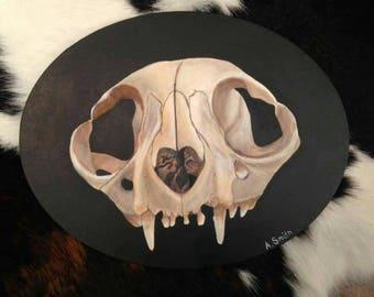 11x14 Cat Skull Acrylic Painting