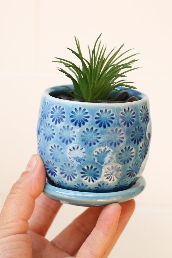 blue succulent planter // small planter // coastal decor