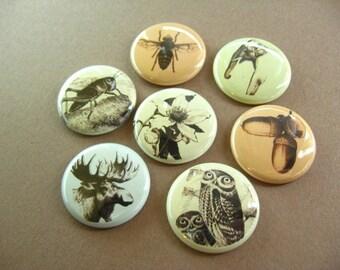 Magnets Seven Animals, Magnabilities Compatible 1179