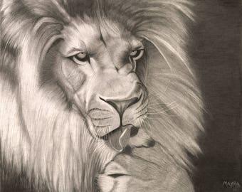 Original Wildlife Lion Graphite Giclee Print 11X14 Matted