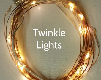 16.5-Foot (5m), 50 Twinkle Fairy Lights on copper or silver wire.  Warm White LEDs, Unique twinkle effect as lights flash independently.