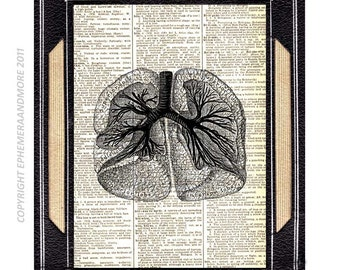 ANATOMICAL LUNGS art print human anatomy medical science black white vintage dictionary text book page thoracic doctor office decor 5x7,8x10