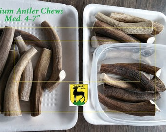 High Quality Elk/Deer Shed antler cuts (by the lb)