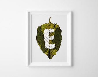 Monogram Letter E – Autumn Leaf – Art Photography – Initial Print – Nature Lover – Fall Wall Art – Birthday Gift – 21 x 30 cm or 30 x 40 cm