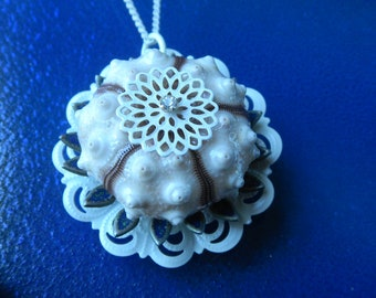 Sea Urchin - White with Brown Stripes (25 to 28mm)  Necklace