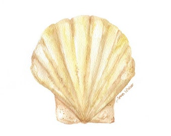 Clam Watercolor Painting - 5 x 7 - Giclee Print - Summer Beach Painting - Seashell