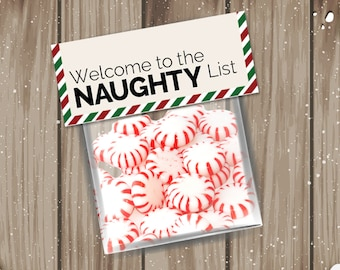 Adult goodie bag tags: DIY printable; Welcome to the Naughty List; final size 4.75w x 2h-Instant Download