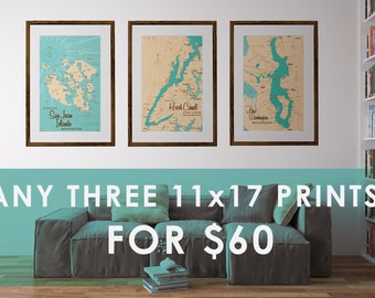 Choose Any 3 Prints for 60 Dollars (11x17 only)