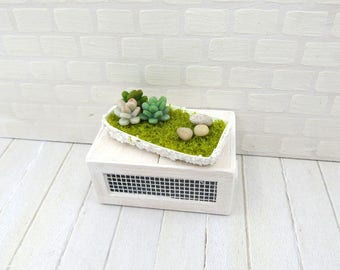 Terrarium with succulents rectangular pot for dollhouse in 1:12 scale
