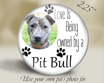 Custom Pet Magnet, Pin or Pocket Mirror, Use your own pet's photo, any breed, Dog Lover Gift, Pet Rescue
