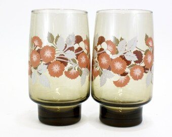 Vintage Smoked Libbey Tumblers with Peach Morning Glories, Set of 2 (E5570)