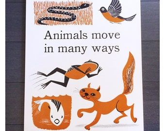 Original Vintage School Science Animal Poster The Instructor Primary Science Concept Charts Cynthia Amrine 1960s Back-to-School