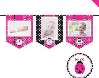 INSTANT DOWNLOAD Pink Ladybug Party - DIY printable photo banner kit