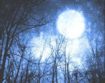 Blue Night Sky Photo, Surreal, Moon Art Print, Tree Photo, Forest, Black, Cosmic, Navy Blue, 8x8 inch Fine Art Print, Into the Midnight