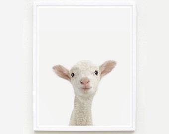 Baby Animal Nursery Art Print. Lamb Little Darling. Animal Wall Art. Animal Nursery Decor. Baby Animal Photo.