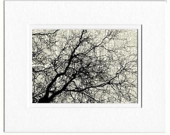 tree branches II print