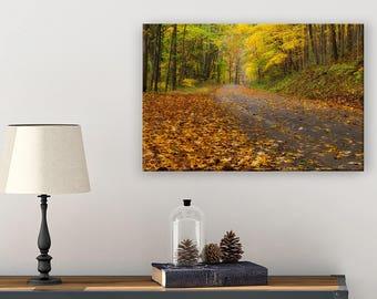 Ohio Wall Decor - Nature Wall Art - Photography Wall Art - Enchanted Forest - Hocking Hills - Fall Leaves - Autumn Art - Fall Art