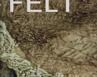 FELT (Veltinis) book by Vilte Kazlauskaite in pdf file