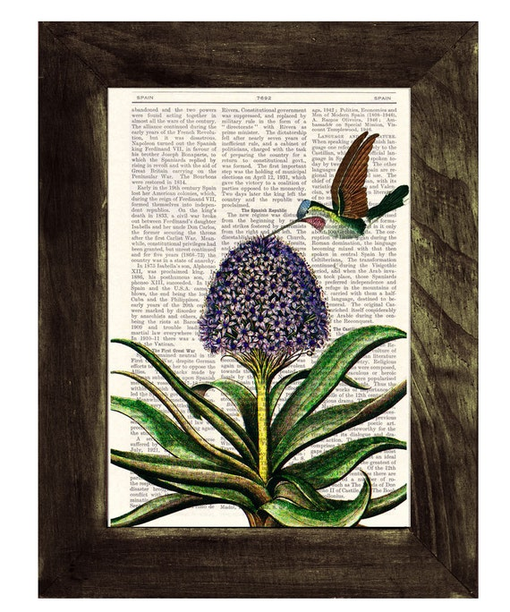 Hummingbird  wall Art Print book Vintage Hummingbird and hyacinth gift her, wall decor hummingbird print ANI121b