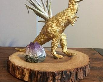 Gold t-rex dinosaur planter with live air plant, desk decor, air planter, gift