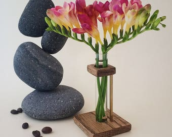 Test tube vase, Mothers day gift idea, Spring decor flower container, Chemistry glass tube vase, Glass plant holder, Rustic centerpiece vase