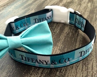 Adjustable Nylon Webbing Ribbon DOG Collar- Hand Made / Teal Collar with Accessory