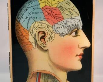 Head anatomy Walnut and Oak HInged Box OOAK