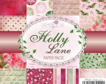 two pockets 15.2 36 papers x 15.2 cm WILD pink HOLLY LANE