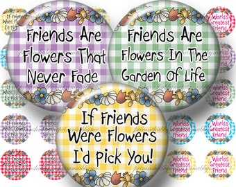 Friends, Bottle Cap Images, Digital Collage Sheets, 1 Inch Circles, Printable Instant Download, Gingham Background (No.1)