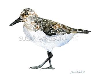 Sandpiper Watercolor Painting - 7 x 5 - Giclee Print - Bird Painting - Bird Watercolor - 5 x 7 Beach Art