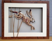 Hare Lovers Gift - Jumpin...