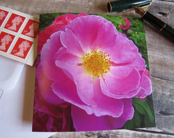 Pink Rose 'Open your heart' Greeting Card Left Blank for Personal Message