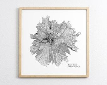 Mount Hood Oregon Topographic Map - Art Print