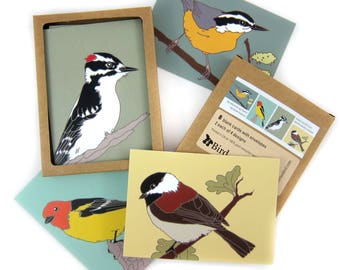 Box of Woodland Bird Note Cards | 2 Each of 4 Designs | Printed on Recycled Paper | blank bird greeting cute nature wildlife outdoors birder