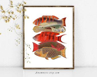 POISSONS tropicaux Art Print - imprimable Téléchargement instantané - illustration de la vie de mer pour encadrement, totes, coussins, t-shirts - plage maison mur décoration