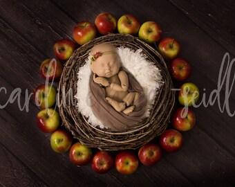 Digital backdrop newborn - fall - winter - dark wood