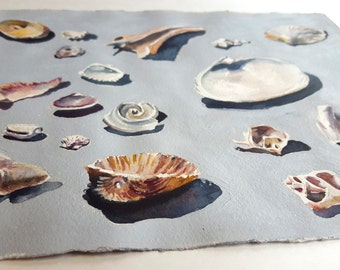 Seaside Shell Collection, Original Watercolor Painting, Beach Decor
