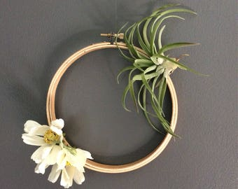 Airplant Wreath
