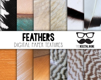 Premium Digital Paper Set, Feathers Mix, Scrapbook Paper, Feathers Digital Paper, Feather Detail, Textured Feathers, Instant Download