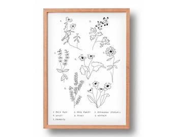 Botanical Wisdom | Floral Art | Art Print | Wall Decor | Gallery Wall | Wall art