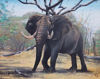 ILLUSTRATION 'Elephant Bull' wall art African desert Wildlife Etosha conservation blue brown green nature environmental tree tusks print