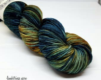 Ewetopia DK, Hand dyed yarn, Superwash Merino Wool, 231 yds/ 100g: Raku.