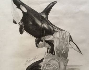 Remenitions of the Past- SeaWorld pencil sketch original print